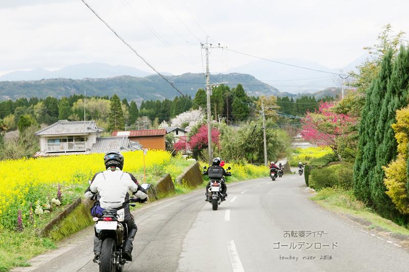 saku66.jpg