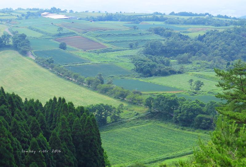 minaoguni3.jpg
