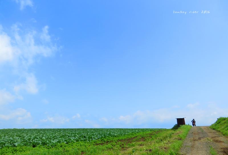 minaoguni4.jpg