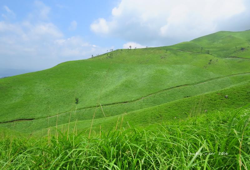 minaoguni12.jpg