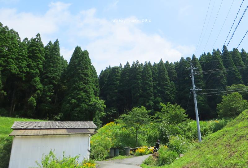 minaoguni29.jpg