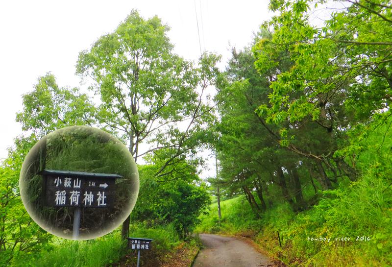 minaoguni31.jpg