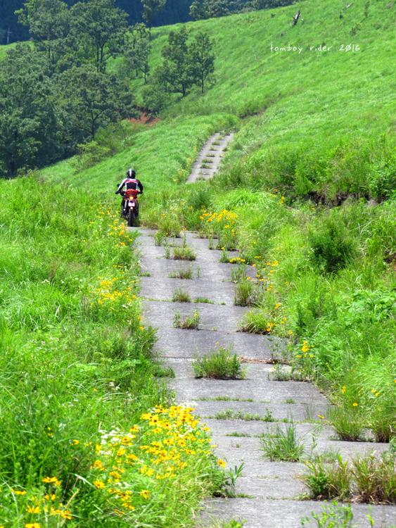 minaoguni36.jpg