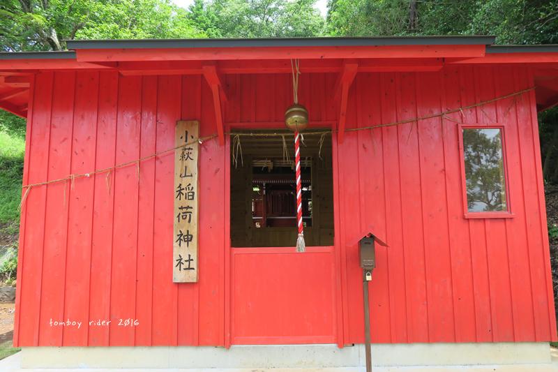 minaoguni50.jpg