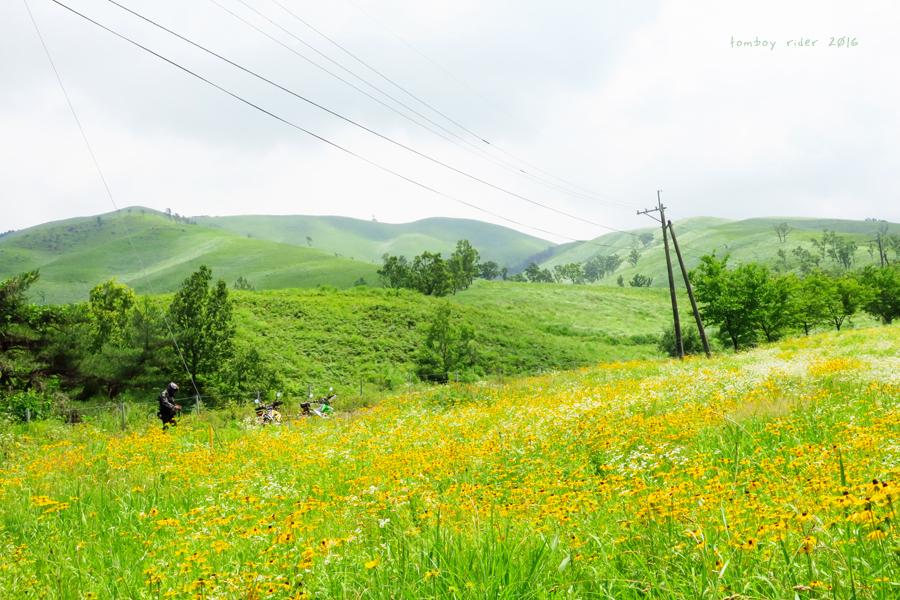 minaoguni62.jpg