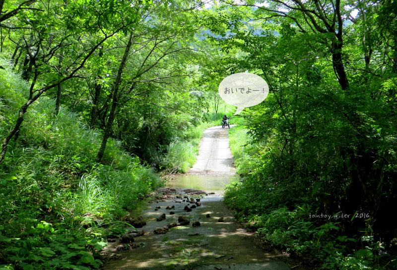 minaoguni78.jpg