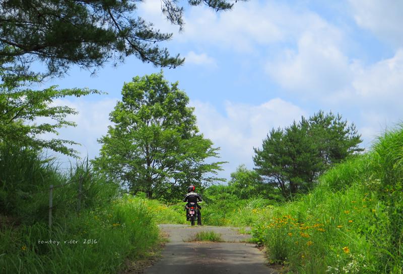 minaoguni132.jpg