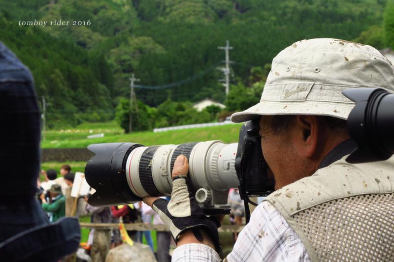 shiba46.jpg