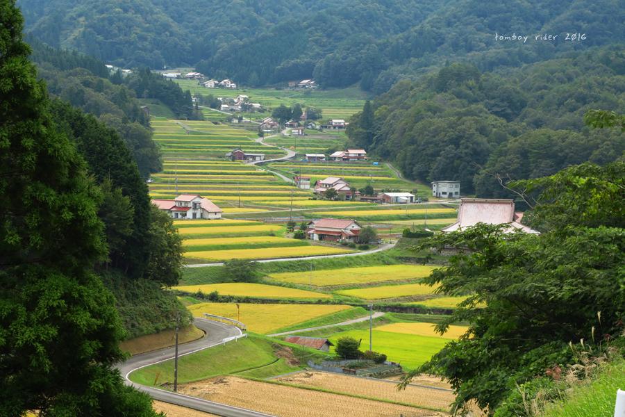 ikiata24.jpg