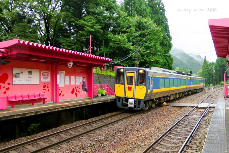 koiya19.jpg