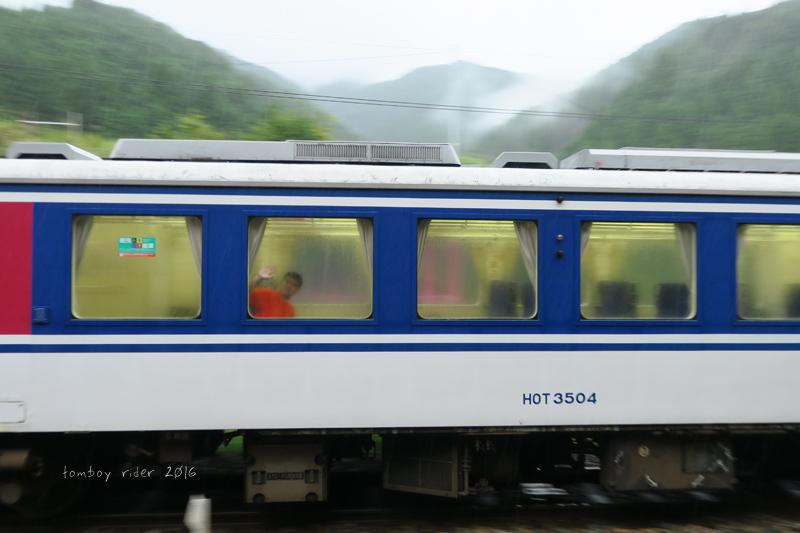 koiya31.jpg