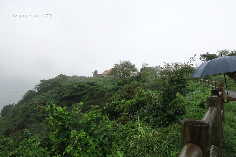koiya48.jpg