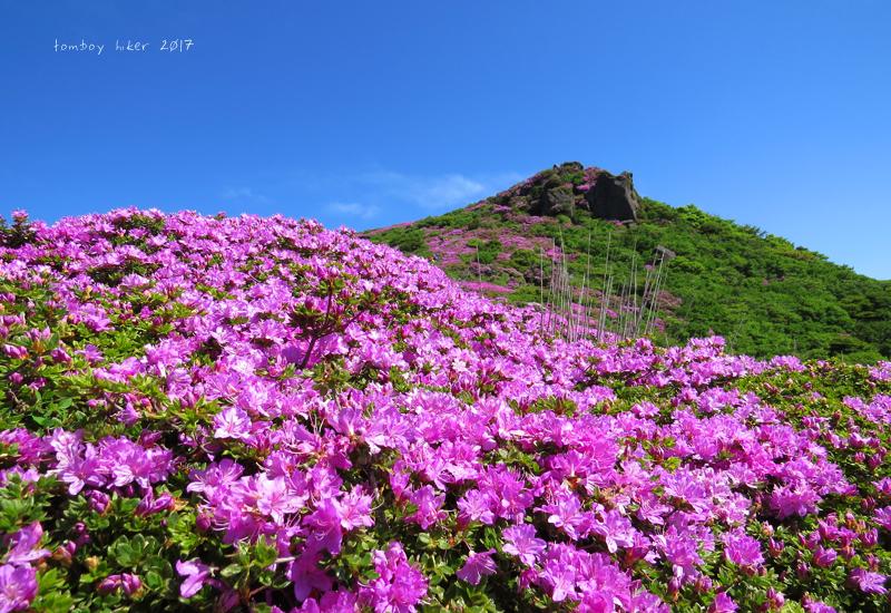 hiiiji5.jpg