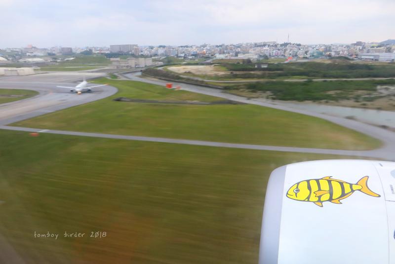 okina14.jpg