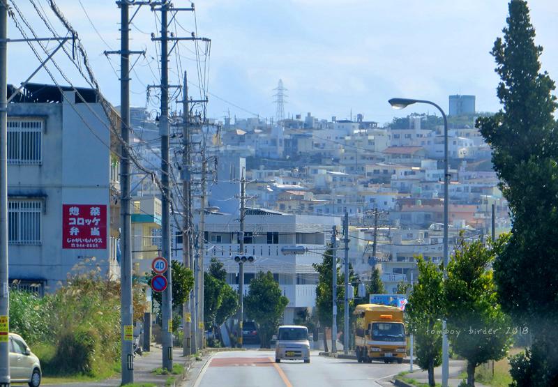 okina49.jpg