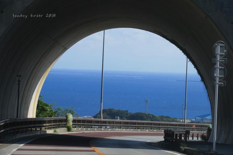 okina60.jpg
