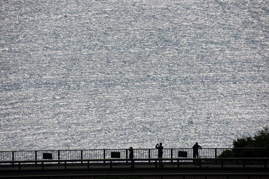 okina62.jpg