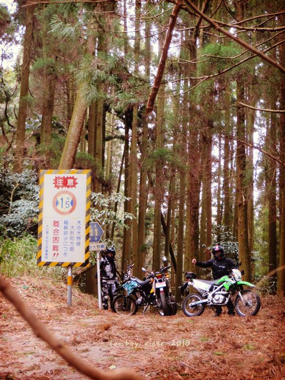 kenono40.jpg
