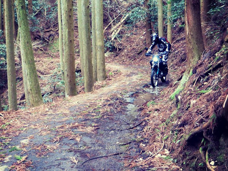 kenono64.jpg