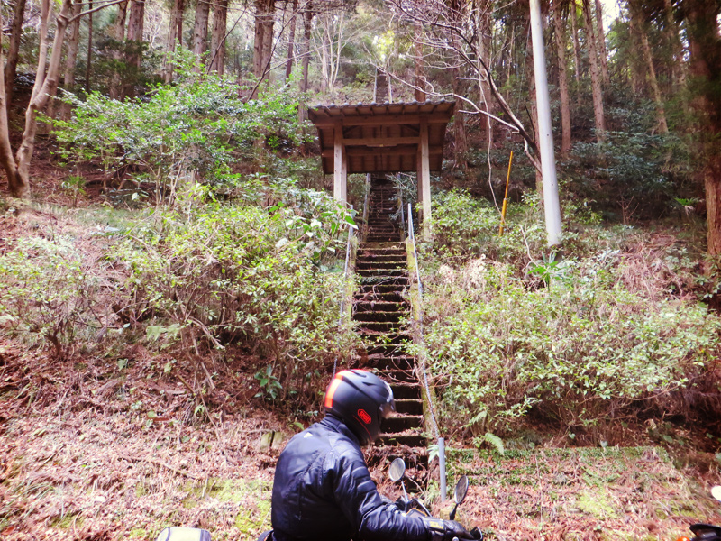 kenono103.jpg