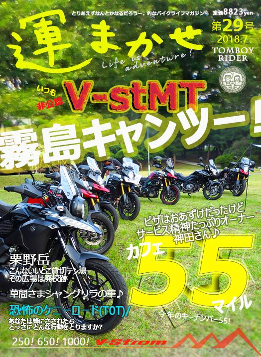 vm84.jpg