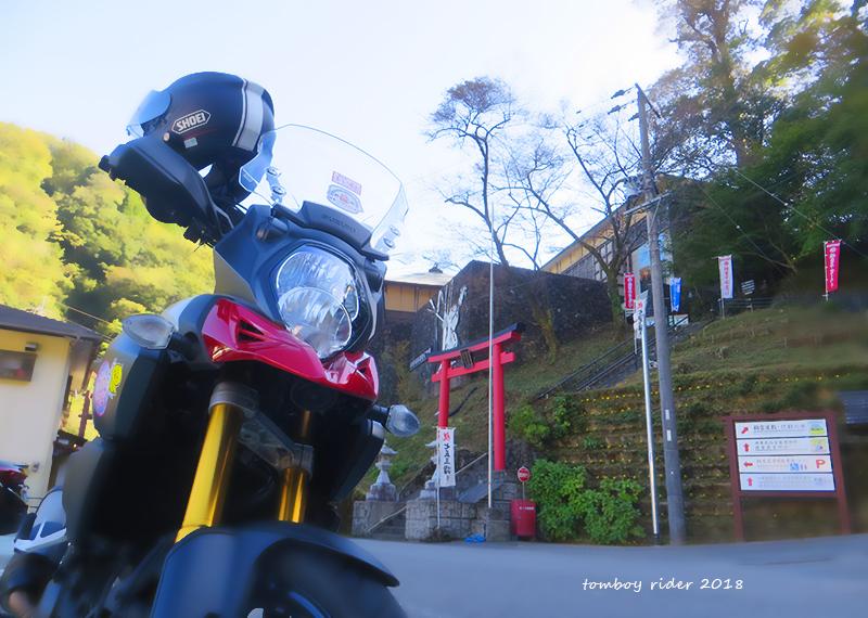 siiba46.jpg