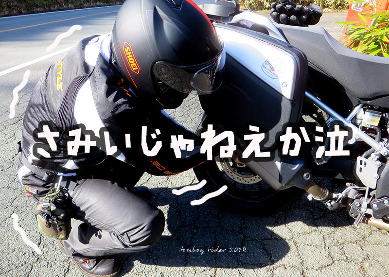 hasf17.jpg