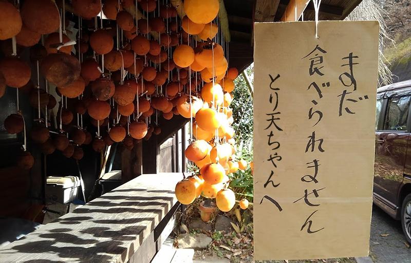 yuri47.jpg