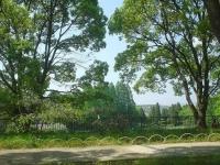 南千里公園2