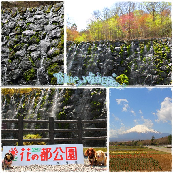 2011112602画像