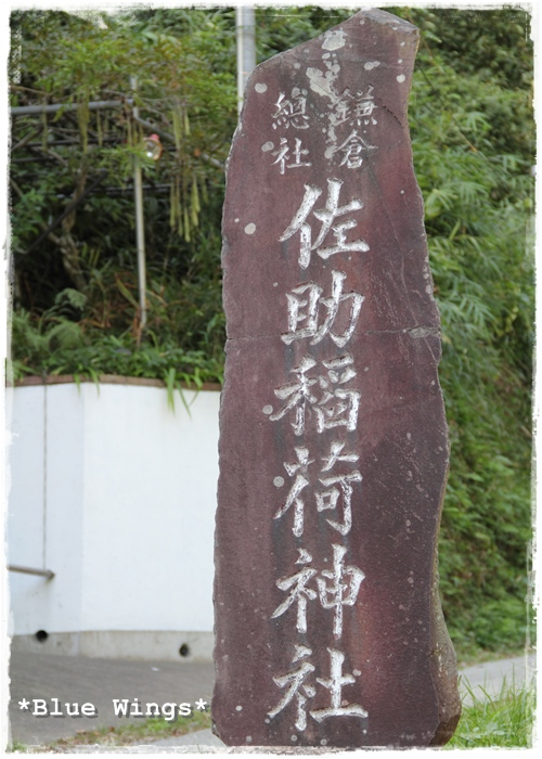 2013103104画像