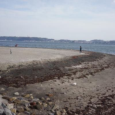 afc2e14740fa 横須賀海軍カレー本舗 スカレーブログ