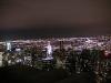 エンパイヤーステイトビルからの夜景