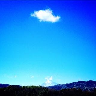 郷田ほづみの画像 p1_13