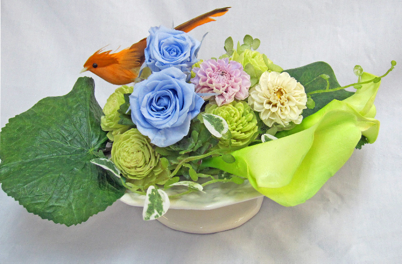 2015 05 09_1116 クレイ白の皿高い 鳥.jpg