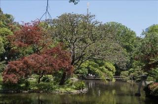 有栖川宮公園2