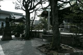 大鳥神社4