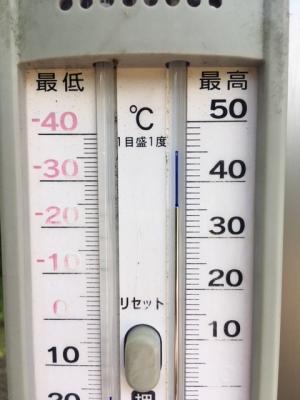 猛暑日の気温