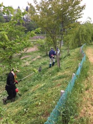 三井地区草刈りボランティア
