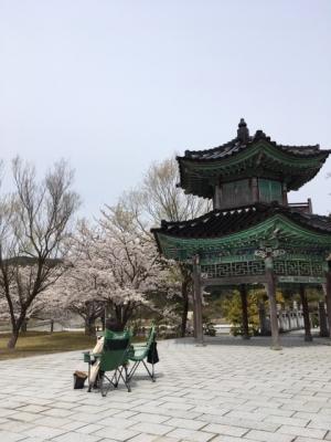 中島町の某公園