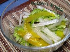 白菜とパプリカの浅漬けサラダ