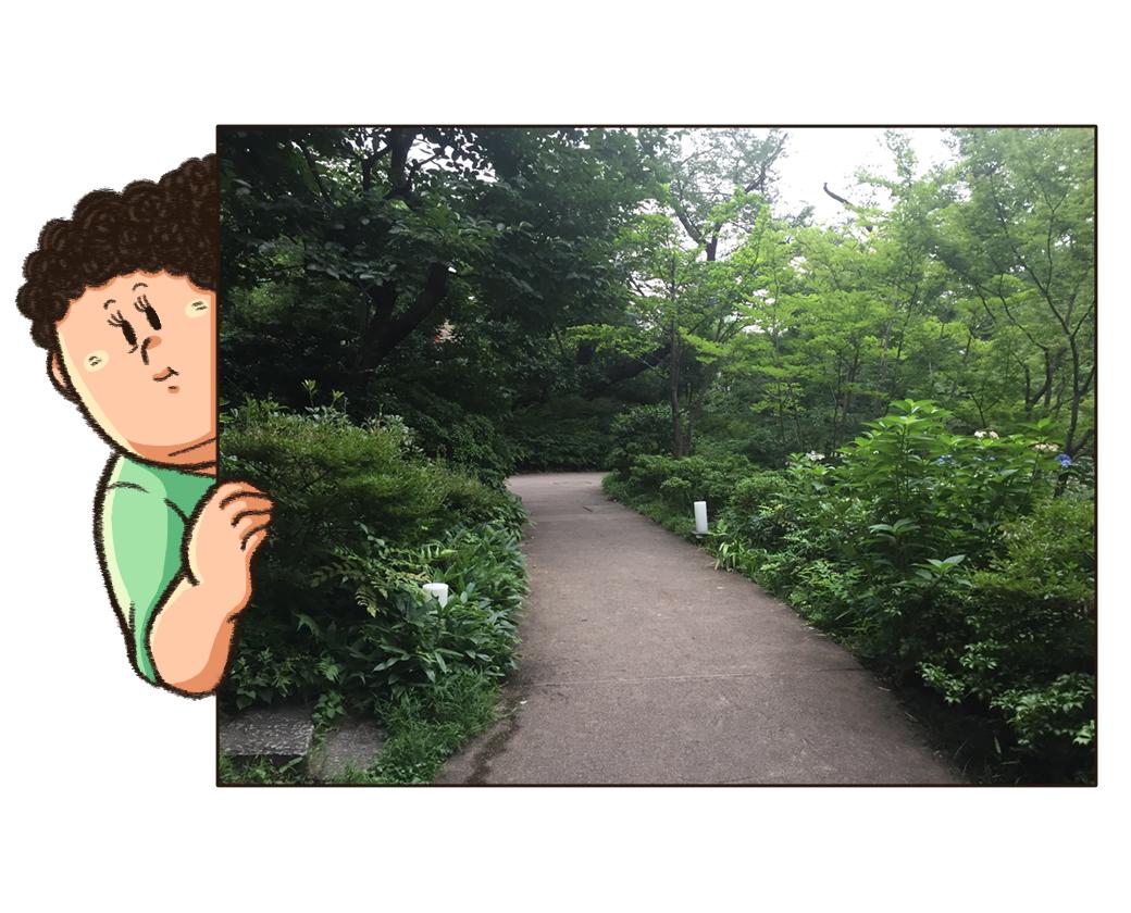 毛利庭園の散歩道