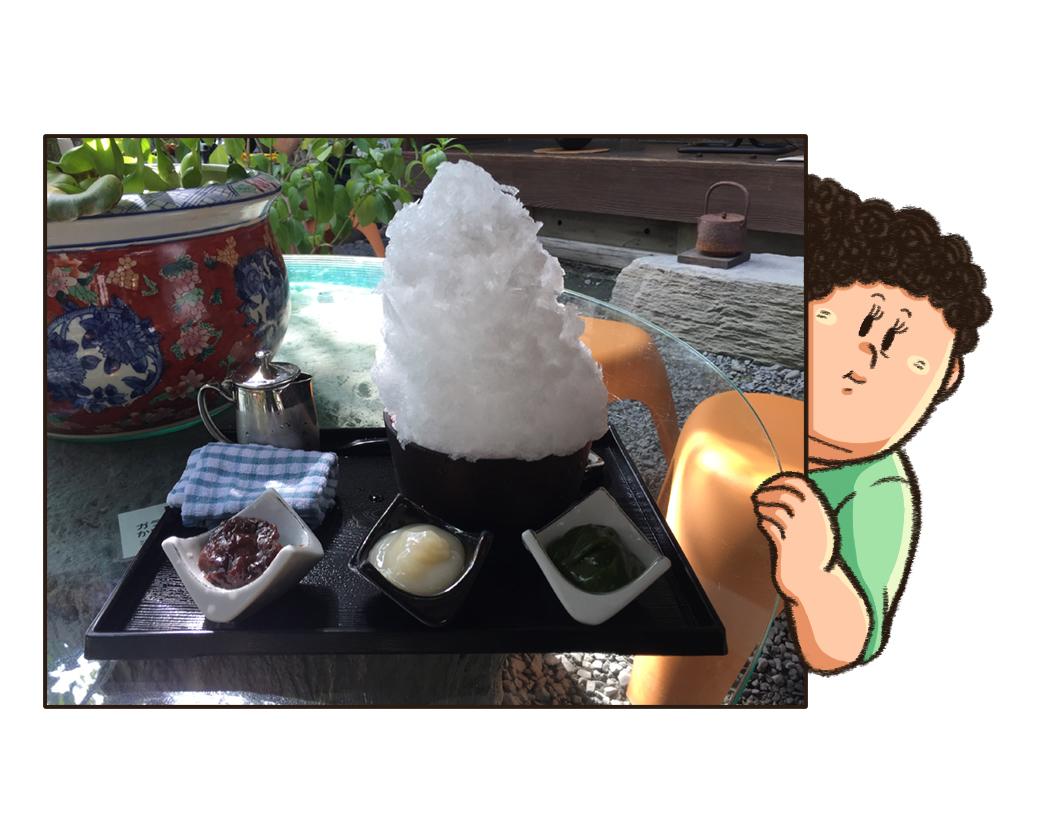 かき氷の写真