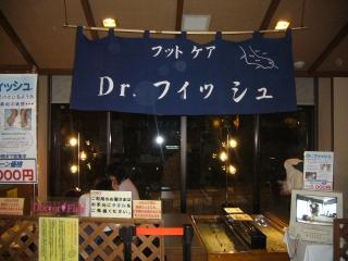 Dr.fish2