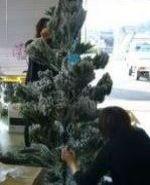Xmas tree2