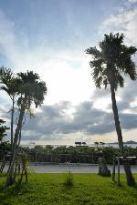 沖縄の景観