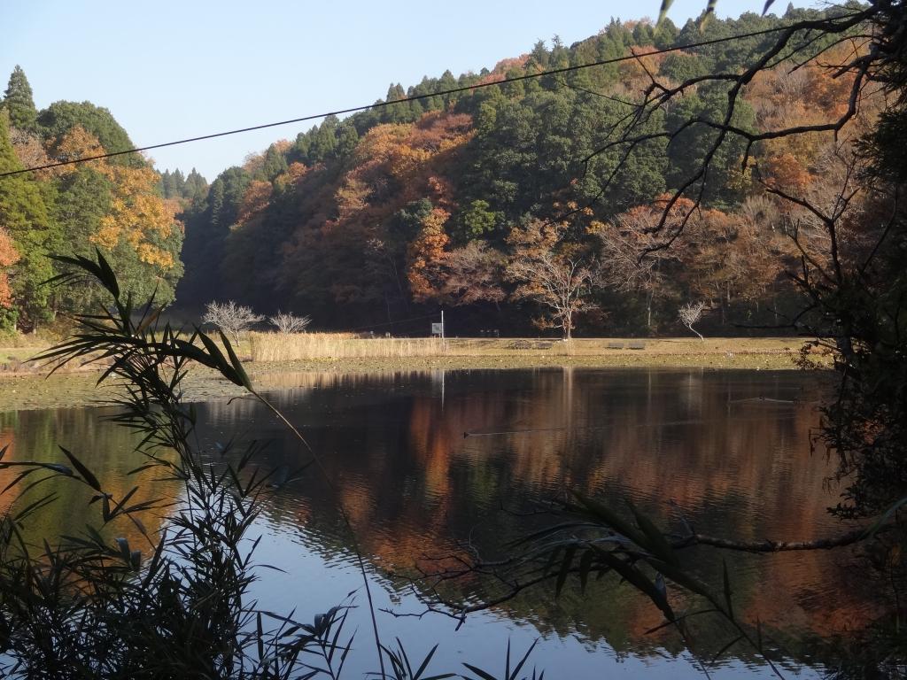 20171129下タ田池