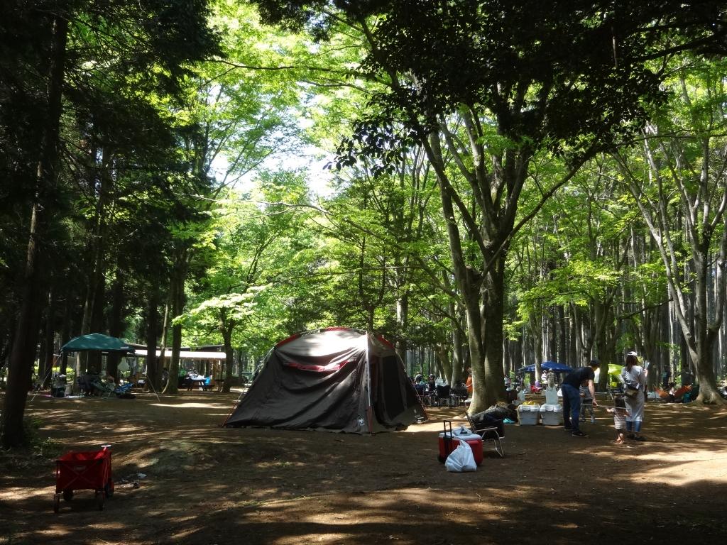 20180422キャンプ