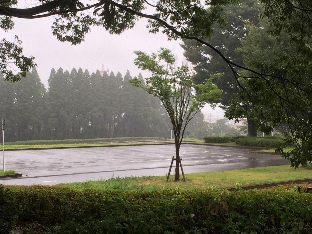 20180728雨