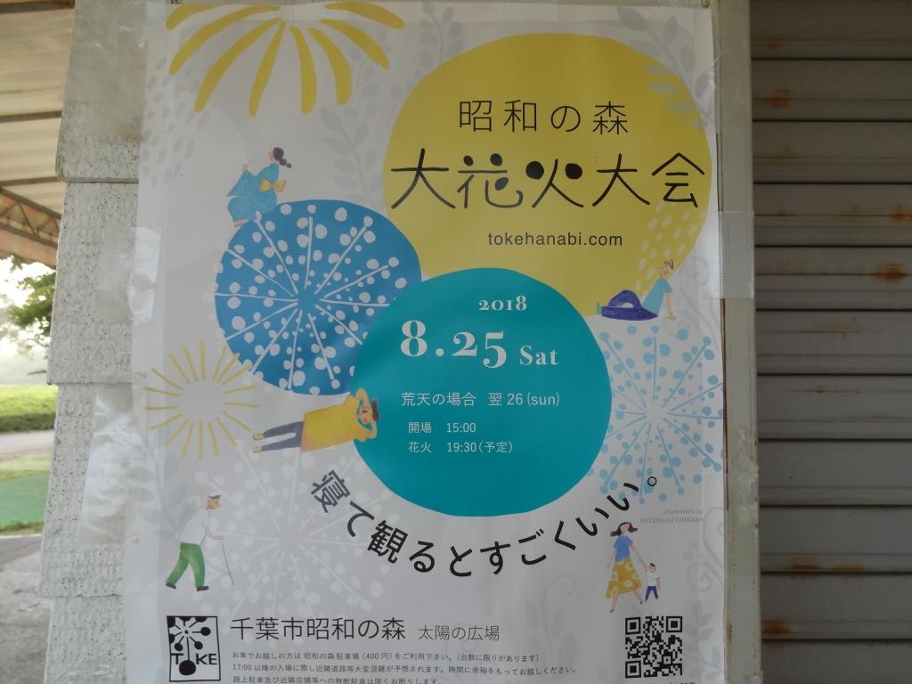 20180804花火大会